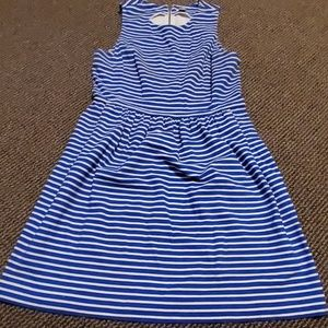 J.Crew Blue and white striped dress size L